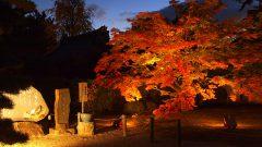 隨心院の秋・4