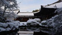 隨心院の冬・3